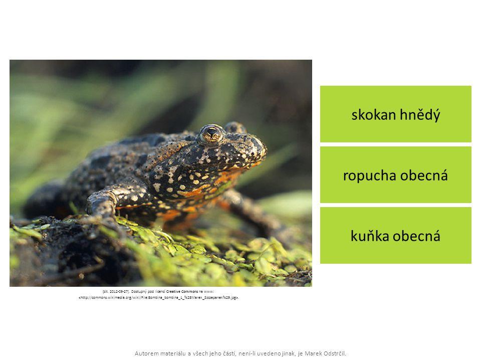 [cit. 2012-09-27]. Dostupný pod licencí Creative Commons na www: